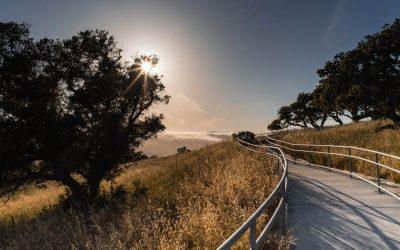 THE WEEKENDER- NORTHERN CALIFORNIA