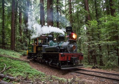 Roaring Camp Railroads - VSCC and Walter Scriptunas