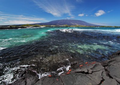 SoCalLifeMag.Galapagos-5